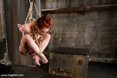 Photo number 12 from The cute, adorable, flexible Sabrina Sparx<br> is back, and gracing Hogtied with her amazing body. shot for Hogtied on Kink.com. Featuring Sabrina Sparx in hardcore BDSM & Fetish porn.