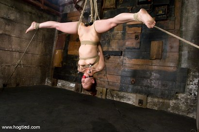 The cute, adorable, flexible Sabrina Sparx is back, and gracing Hogtied with her amazing body.