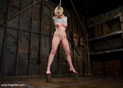 Photo number 3 from Samantha Sin - blond, shaved, <br>toned, and a former gymnast - now a first time bondage model. shot for Hogtied on Kink.com. Featuring Samantha Sin in hardcore BDSM & Fetish porn.