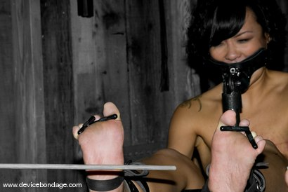 Photo number 15 from Jandi Lin Live, Part 2 shot for Device Bondage on Kink.com. Featuring Jandi Lin, Sarah Jane Ceylon and Claire Adams in hardcore BDSM & Fetish porn.