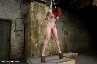Photo number 3 from Berlin and her massive breasts are back. <br /> Great breast bondage and hardcore Orgams. shot for Hogtied on Kink.com. Featuring Mz Berlin in hardcore BDSM & Fetish porn.