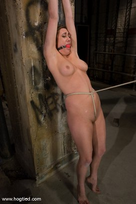 Photo number 11 from If you're a hot, sexy construction worker working<br> in the armory, you're getting tied up. shot for Hogtied on Kink.com. Featuring Gwen Diamond and Sgt. Major in hardcore BDSM & Fetish porn.