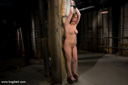 Photo number 10 from If you're a hot, sexy construction worker working<br> in the armory, you're getting tied up. shot for Hogtied on Kink.com. Featuring Gwen Diamond and Sgt. Major in hardcore BDSM & Fetish porn.