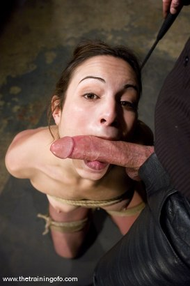 Photo number 9 from The Training of Amber Rayne, Day One shot for The Training Of O on Kink.com. Featuring Amber Rayne in hardcore BDSM & Fetish porn.