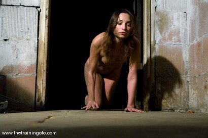 Photo number 4 from The Training of Amber Rayne, Day One shot for The Training Of O on Kink.com. Featuring Amber Rayne in hardcore BDSM & Fetish porn.