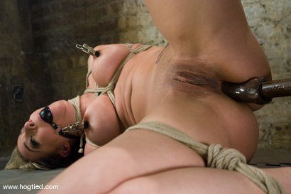 Photo number 10 from It's new face month at Hogtied, and Delilah Strong   suffers through some extremely tight bondage. shot for Hogtied on Kink.com. Featuring Delilah Strong in hardcore BDSM & Fetish porn.