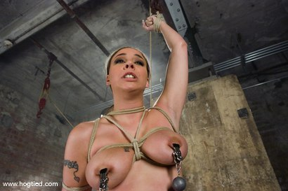 Photo number 4 from It's new face month at Hogtied, and Delilah Strong<br> suffers through some extremely tight bondage. shot for Hogtied on Kink.com. Featuring Delilah Strong in hardcore BDSM & Fetish porn.
