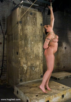 Photo number 6 from It's new face month at Hogtied, and Delilah Strong<br> suffers through some extremely tight bondage. shot for Hogtied on Kink.com. Featuring Delilah Strong in hardcore BDSM & Fetish porn.