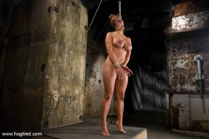 Photo number 13 from Hot tan busty Trina Michaels first time Hogtied appearance.<br>You have to love California girls. shot for Hogtied on Kink.com. Featuring Trina Michaels in hardcore BDSM & Fetish porn.