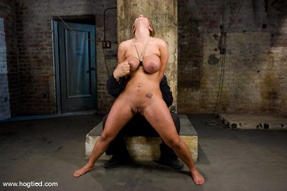 Photo number 6 from Hot tan busty Trina Michaels first time Hogtied appearance.<br>You have to love California girls. shot for Hogtied on Kink.com. Featuring Trina Michaels in hardcore BDSM & Fetish porn.
