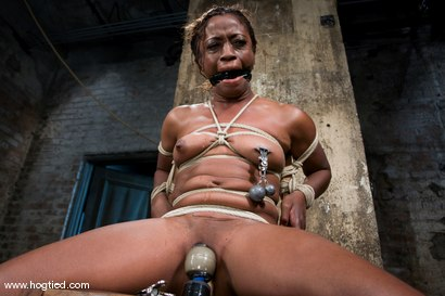 Photo number 11 from Hogtied welcome sexy MILF Monique for her<br> first hardcore bondage experience. shot for Hogtied on Kink.com. Featuring Monique in hardcore BDSM & Fetish porn.