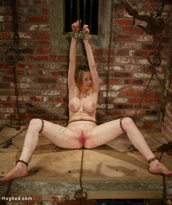 Photo number 5 from Maklaryn shot for Hogtied on Kink.com. Featuring Maklaryn in hardcore BDSM & Fetish porn.