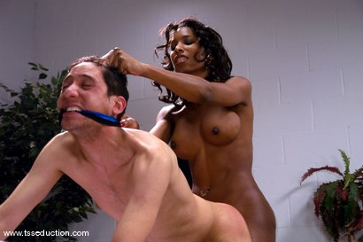 Photo number 14 from Natassia Dream and Brian Mayor shot for TS Seduction on Kink.com. Featuring Natassia Dreams and Brian Mayor in hardcore BDSM & Fetish porn.