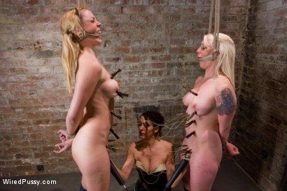 Photo number 14 from Switch: Lorelei Lee VS Anette Schwarz shot for Wired Pussy on Kink.com. Featuring Annette Schwarz and Lorelei Lee in hardcore BDSM & Fetish porn.