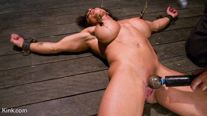 Photo number 13 from PecPanther: Nationally-ranked Bodybuilder Bound and Made to Cum shot for Hogtied on Kink.com. Featuring PecPanther in hardcore BDSM & Fetish porn.