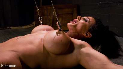 Photo number 16 from PecPanther: Nationally-ranked Bodybuilder Bound and Made to Cum shot for Hogtied on Kink.com. Featuring PecPanther in hardcore BDSM & Fetish porn.
