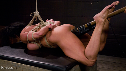 Photo number 19 from PecPanther: Nationally-ranked Bodybuilder Bound and Made to Cum shot for Hogtied on Kink.com. Featuring PecPanther in hardcore BDSM & Fetish porn.