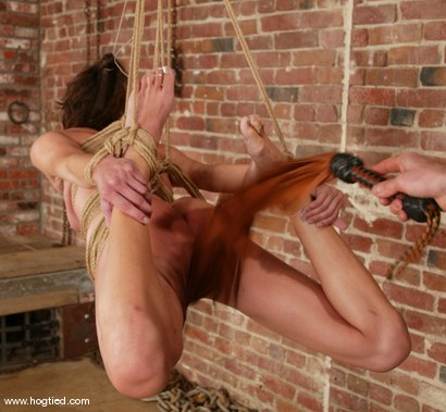 Photo number 6 from Kaylynn shot for Hogtied on Kink.com. Featuring Kaylynn in hardcore BDSM & Fetish porn.