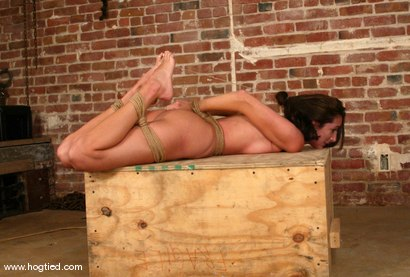 Photo number 10 from Kaylynn shot for Hogtied on Kink.com. Featuring Kaylynn in hardcore BDSM & Fetish porn.