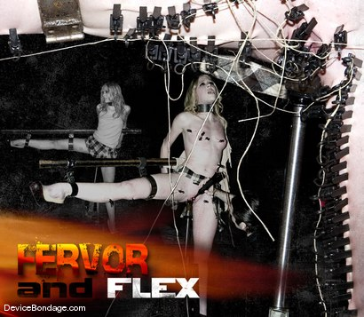 Fervor and Flex