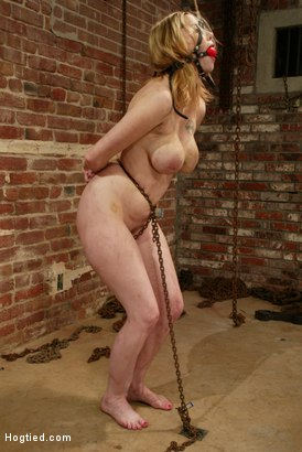 Photo number 2 from Maklaryn shot for Hogtied on Kink.com. Featuring Maklaryn in hardcore BDSM & Fetish porn.