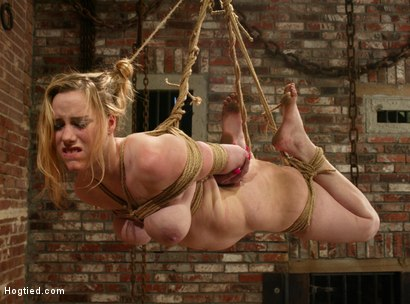 Photo number 8 from Maklaryn shot for Hogtied on Kink.com. Featuring Maklaryn in hardcore BDSM & Fetish porn.