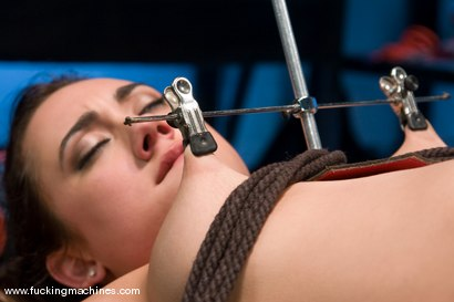 Photo number 6 from Gwen Diamond - Bound and Sassy shot for Fucking Machines on Kink.com. Featuring Gwen Diamond in hardcore BDSM & Fetish porn.