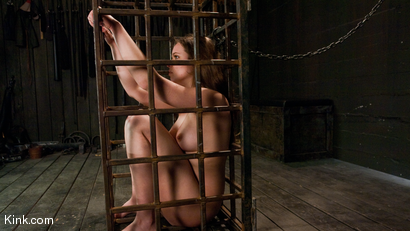 Photo number 11 from Devaun: Girl Next Door Survives a Hogtied Classic Shoot. shot for Hogtied on Kink.com. Featuring Devaun in hardcore BDSM & Fetish porn.