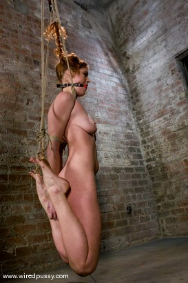 Photo number 7 from PigTails shot for Wired Pussy on Kink.com. Featuring Sabrina Fox in hardcore BDSM & Fetish porn.