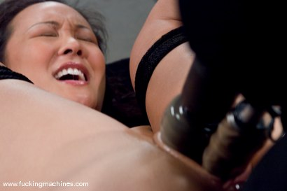 Photo number 9 from Hot Asian babe, Jandi Lin takes on the machines shot for Fucking Machines on Kink.com. Featuring Jandi Lin in hardcore BDSM & Fetish porn.