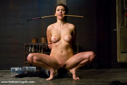 The Training of Princess Donna, Day Three