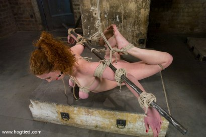Photo number 11 from Welcome Sabrina Fox, for her first Hogtied experience.<br> We love natural red heads. shot for Hogtied on Kink.com. Featuring Sabrina Fox in hardcore BDSM & Fetish porn.