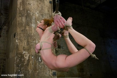 Photo number 13 from Welcome Sabrina Fox, for her first Hogtied experience.<br> We love natural red heads. shot for Hogtied on Kink.com. Featuring Sabrina Fox in hardcore BDSM & Fetish porn.