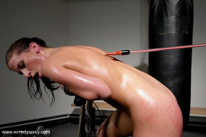 Photo number 6 from Exercise Torture shot for Wired Pussy on Kink.com. Featuring Ariel X and Tomcat in hardcore BDSM & Fetish porn.