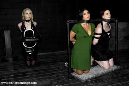 Photo number 1 from Three Models Suffer on Their Knees Live, Part 1 shot for Device Bondage on Kink.com. Featuring Claire Adams, Miss Jade Indica and Sarah Jane Ceylon in hardcore BDSM & Fetish porn.