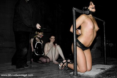 Three Models Suffer on Their Knees Live, Part 1