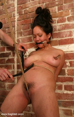 Photo number 8 from Loni shot for Hogtied on Kink.com. Featuring Loni in hardcore BDSM & Fetish porn.