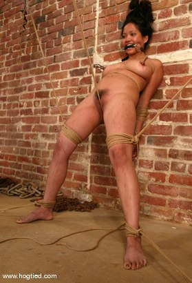 Photo number 7 from Loni shot for Hogtied on Kink.com. Featuring Loni in hardcore BDSM & Fetish porn.