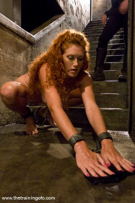 Photo number 4 from The Training of Sabrina Fox, Day One shot for The Training Of O on Kink.com. Featuring Sabrina Fox and Lobo in hardcore BDSM & Fetish porn.
