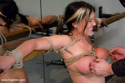 Photo number 11 from Welcome Claire Dames and her   massively huge breasts to Hogtied. shot for Hogtied on Kink.com. Featuring Sgt. Major and Claire Dames in hardcore BDSM & Fetish porn.