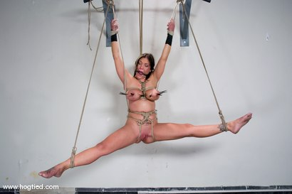 Photo number 6 from Welcome Claire Dames and her   massively huge breasts to Hogtied. shot for Hogtied on Kink.com. Featuring Sgt. Major and Claire Dames in hardcore BDSM & Fetish porn.