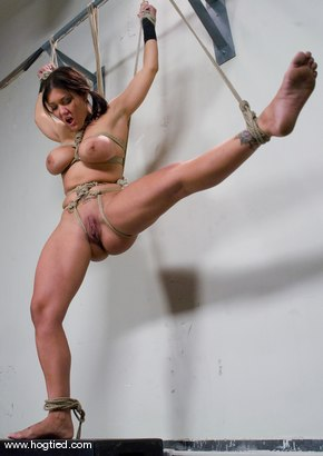 Welcome Claire Dames and her massively huge breasts to Hogtied.