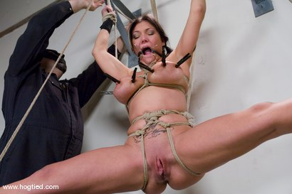 Photo number 5 from Welcome Claire Dames and her <br>massively huge breasts to Hogtied. shot for Hogtied on Kink.com. Featuring Sgt. Major and Claire Dames in hardcore BDSM & Fetish porn.