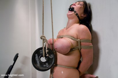 Photo number 8 from Welcome Claire Dames and her <br>massively huge breasts to Hogtied. shot for Hogtied on Kink.com. Featuring Sgt. Major and Claire Dames in hardcore BDSM & Fetish porn.