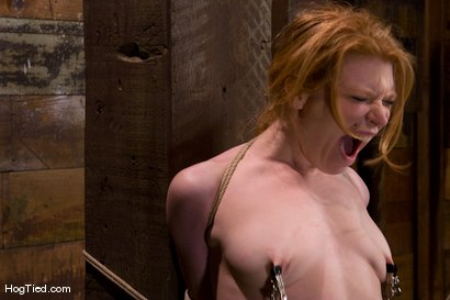 Photo number 13 from Madison Young... The Category 5 Bondage girl shot for Hogtied on Kink.com. Featuring Sgt. Major and Madison Young in hardcore BDSM & Fetish porn.