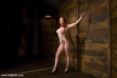 Photo number 2 from Red head with massive huge tits?<br>Then it must be Berlin. We love a girl who loves bondage. shot for Hogtied on Kink.com. Featuring Mz Berlin in hardcore BDSM & Fetish porn.