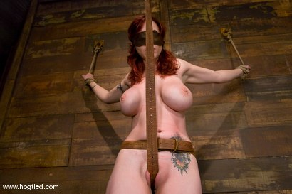 Photo number 3 from Red head with massive huge tits?<br>Then it must be Berlin. We love a girl who loves bondage. shot for Hogtied on Kink.com. Featuring Mz Berlin in hardcore BDSM & Fetish porn.