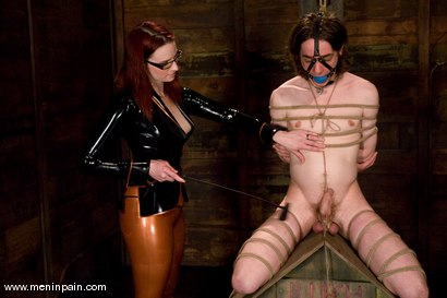 Photo number 3 from Miss Adams shot for Men In Pain on Kink.com. Featuring Kade, Claire Adams and Riley Shy in hardcore BDSM & Fetish porn.