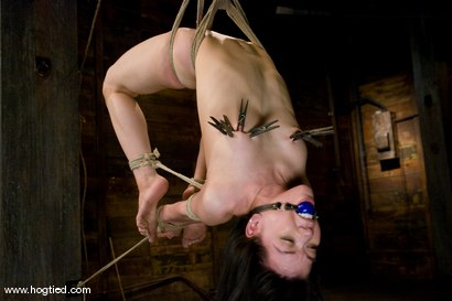 Photo number 8 from Welcome Amie to Hogtied<br> We love hot flexible college students. shot for Hogtied on Kink.com. Featuring Sgt. Major and Amie in hardcore BDSM & Fetish porn.