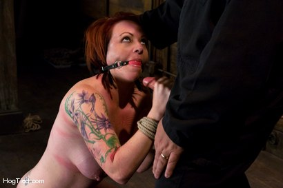 Photo number 13 from Kylie Ireland, the name that says it all. Huge toys, Huge Orgasms shot for Hogtied on Kink.com. Featuring Kylie Ireland in hardcore BDSM & Fetish porn.